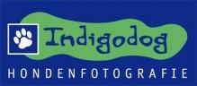 IndigoDog Hondenfotografie